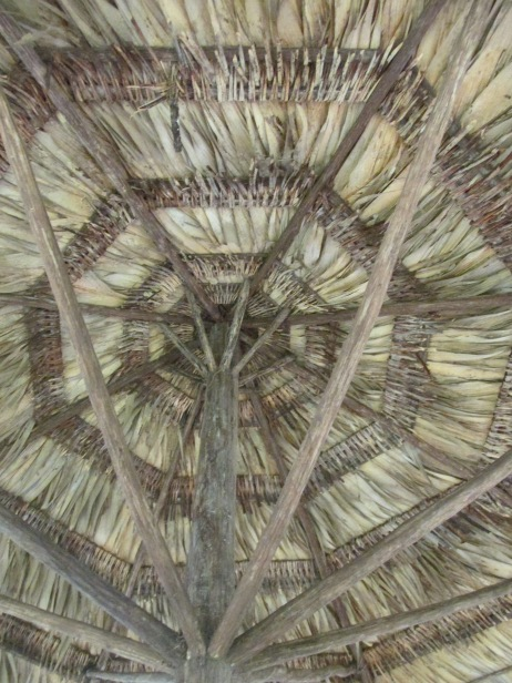 A palm roof